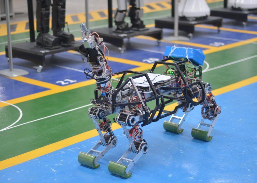 4LEGGED ROBOT ARAT IS IN THE FIELD - 9