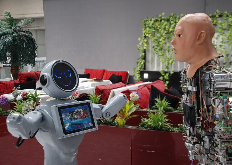 Technology Conversation Between Humanoid Robots named AKINCI4 and Mini ADA - 6