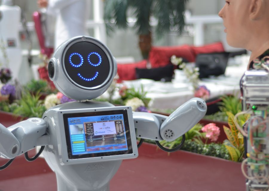 Technology Conversation Between Humanoid Robots named AKINCI4 and Mini ADA - 8