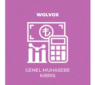 AKINSOFT Wolvox General Accounting (TRNC)