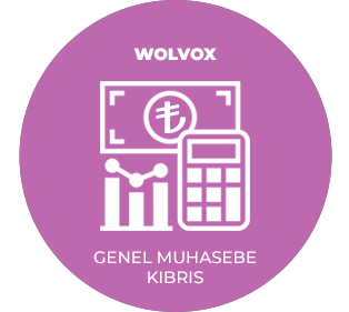 AKINSOFT Wolvox General Accounting (TRNC)